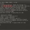 Windowsブリッジ接続でラズパイ2をネットにつなぐ